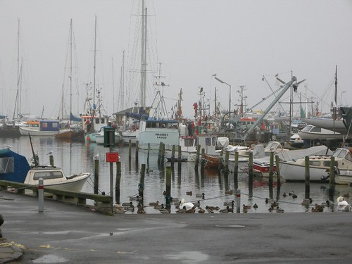 Harbour in Dragør