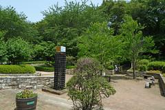 泉の森(ふれあいの森)―緑の見本園(Green garden, Izuminomori park, Yamato, Kanagawa, Japan)