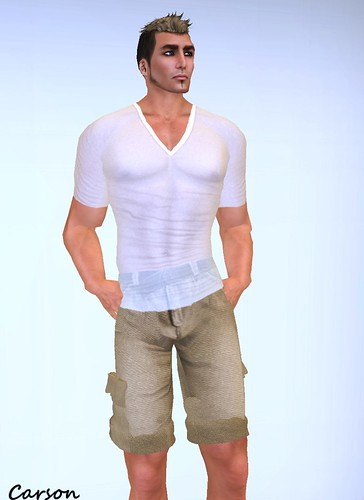 Leather Bound - Sheer V-Neck T-Shirt    Brocade Tiger - Khaki Cargo Shorts