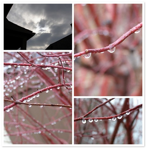 dreary/beautiful
