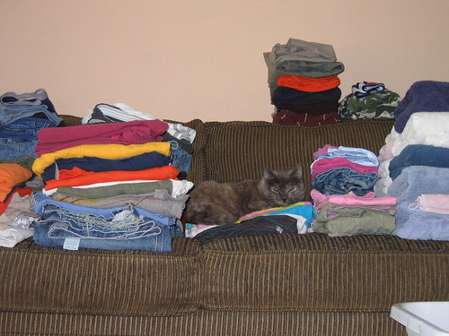 get off my laundry