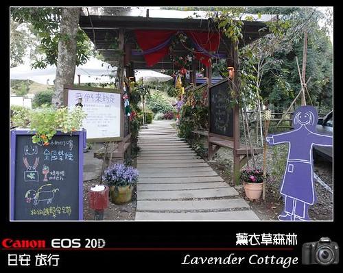 LavenderCottage_0156
