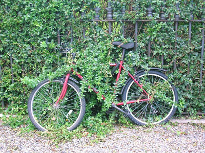 Bike at Trinity College