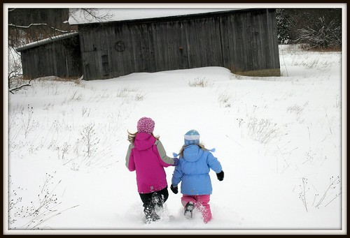 Race you to the barn! by Bean in Sylvan Lake