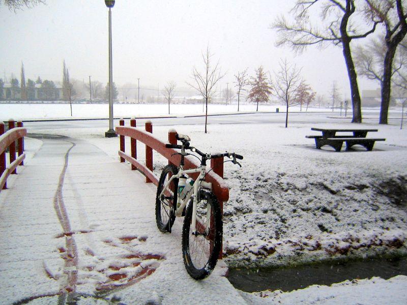 1st Snow Commute