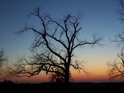 sunset - finally dug out the tripod.jpg