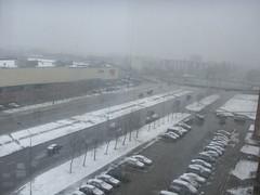 Sniegas pavasarį #3