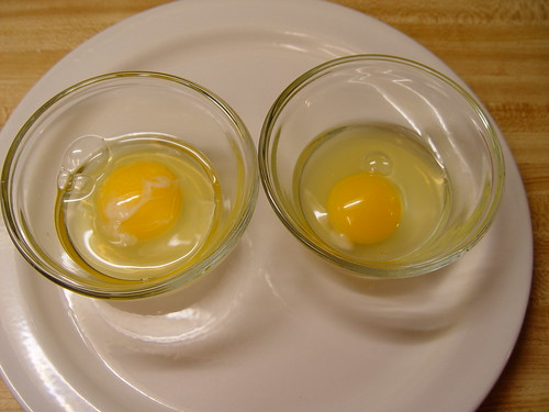 Conventional egg vs. free range egg