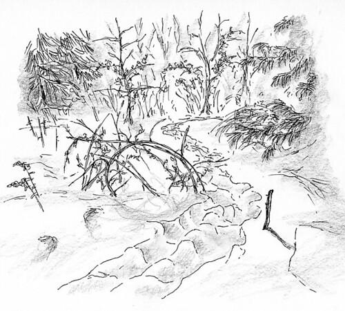 Sketch of Sauriol trail