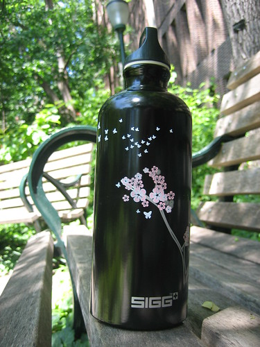 sigg bottle -- night whispers
