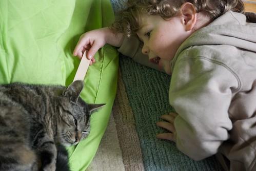 Daan doet check-up van de kat