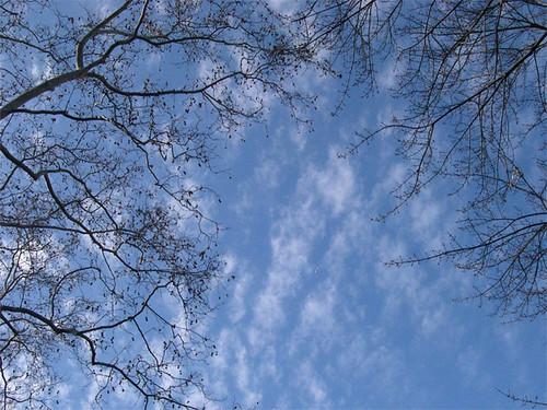 080113-sky