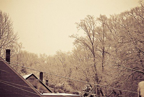 First Snow-Rooftops