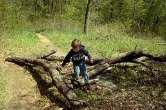 hike hike hike