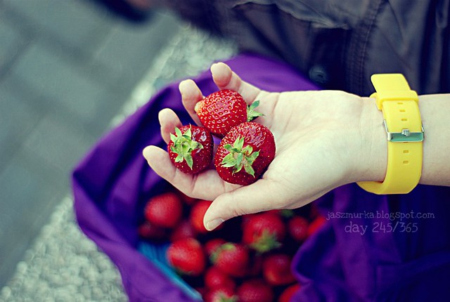 day 245/365 [strawberries]