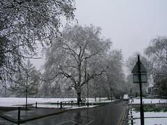 Snow on Ealing Common, London, April 6, 2008.