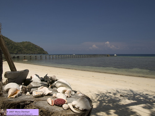 Beach at Selayar Dive Resort