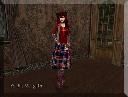 Tartan Kitty - 2-29 Blog 2