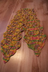 2008-02-11-variegated-candleflame-scarf-FO2