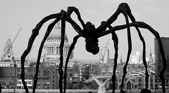Maman - Louise Bourgeois' Giant Spider