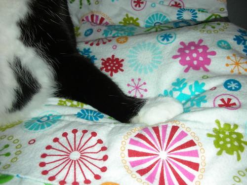 Sophia's paw of approval