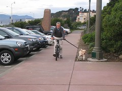 Dad tries a new method of exercising his dog