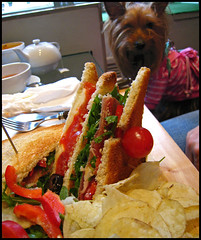 46 avenue club sandwich Parme