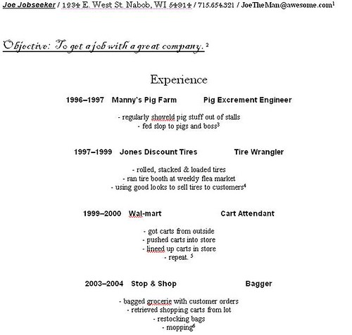 Example Of Resume For Beginners