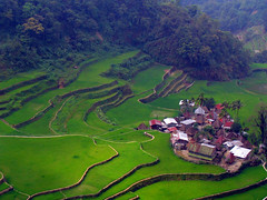 Banaue, Philippines - Morning View
