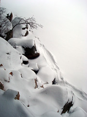 Beaver Trail?