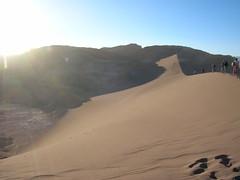 Sandboarding Dune
