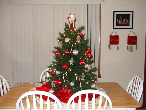 Our Christmas Tree 2007
