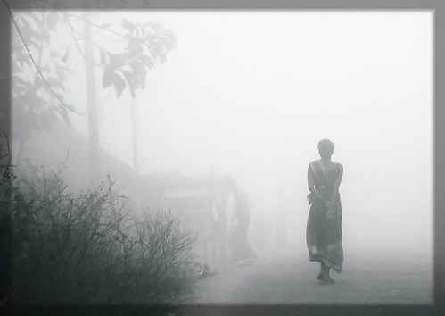 Fog Walk..