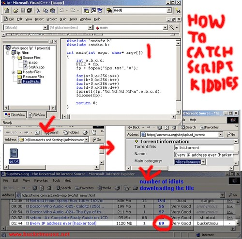 how-to-catch-script-kiddies