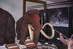 Woolly Mammoth Hunt - Horniman Museum, London.