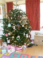 Post Christmas Tree Photo