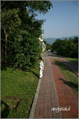 b-20080426_154843.jpg