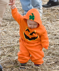 "IMG_1148: Pumpkin Kid • <a style=""font-size:0.8em;"" href=""http://www.flickr.com/photos/54494252@N00/1903538726/"" target=""_blank"">View on Flickr</a>"