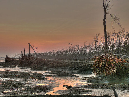 Bengladesh coastline after the cyclone Sidr - spring 08 (joiseyshowaa/flickr)