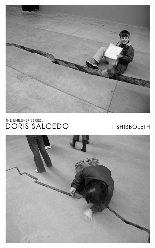 Doris Salcedo Shibboleth at Tate Modern