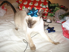 xmas wrapping 056