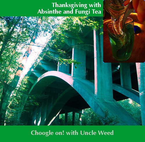 Thanksgiving with Absinthe and Fungi Tea