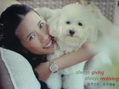 Karen Mok Makes Puppies Sad