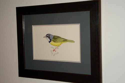 Junkins Warbler Painting