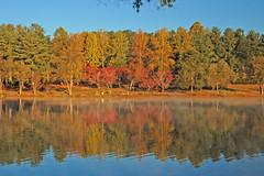 Furman Lake Colors