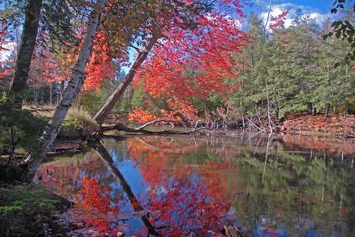 The Crystal River by Jim Sorbie