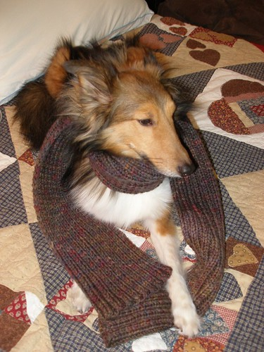 2x2 scarf