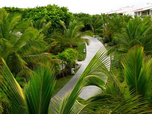 Punta Cana: July 2009