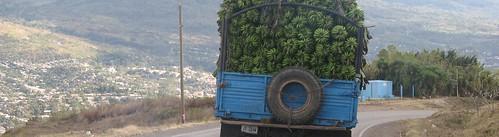 Llegando a Matagalpa