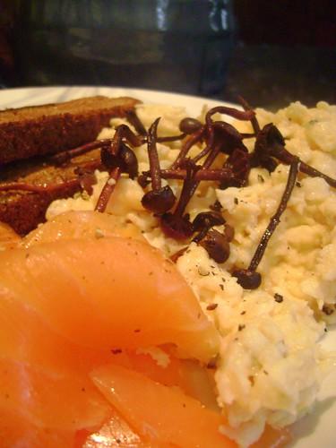 Amethyst Deceiver Breakfast